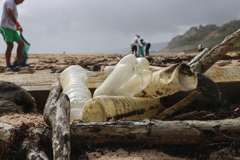 How to Organize a local Beach Clean-up