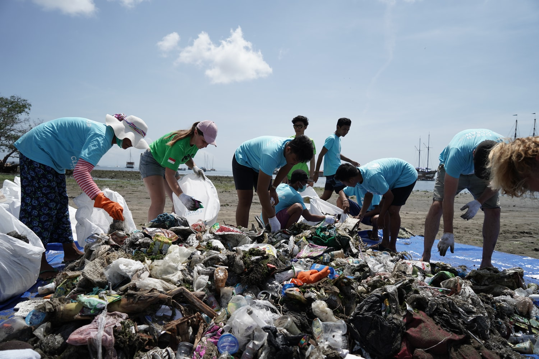 The Problem of Plastics